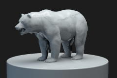 Marmor_Bear